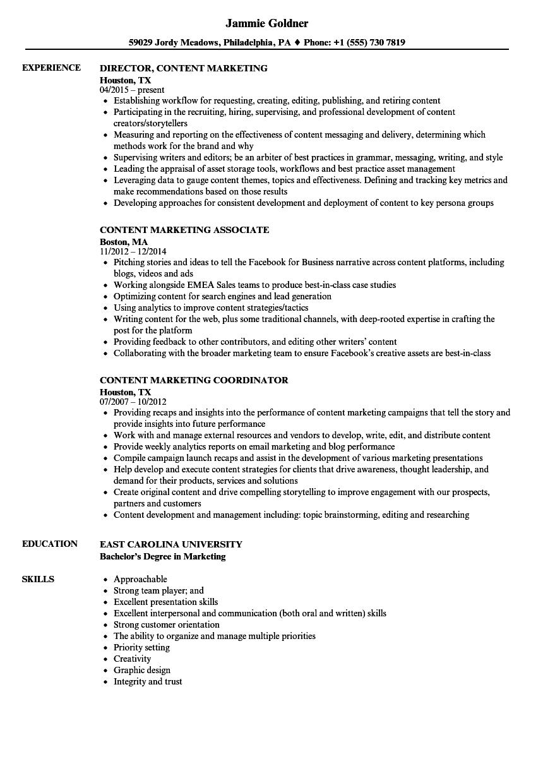 resume with skills sample