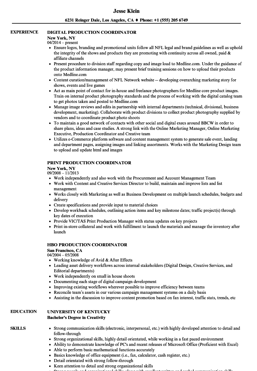 production support sample resume