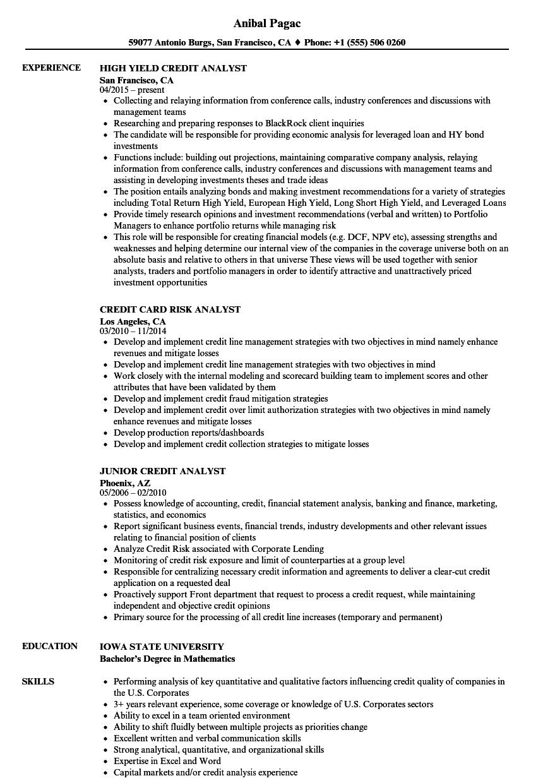 sample resume for portfolio analyst