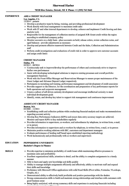 cv credit manager