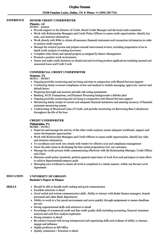 commercial loan underwriter resume sample