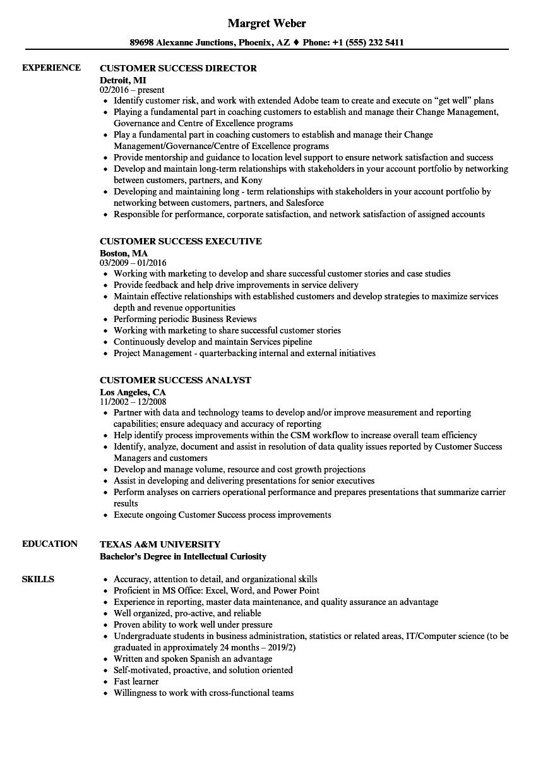job experience resume