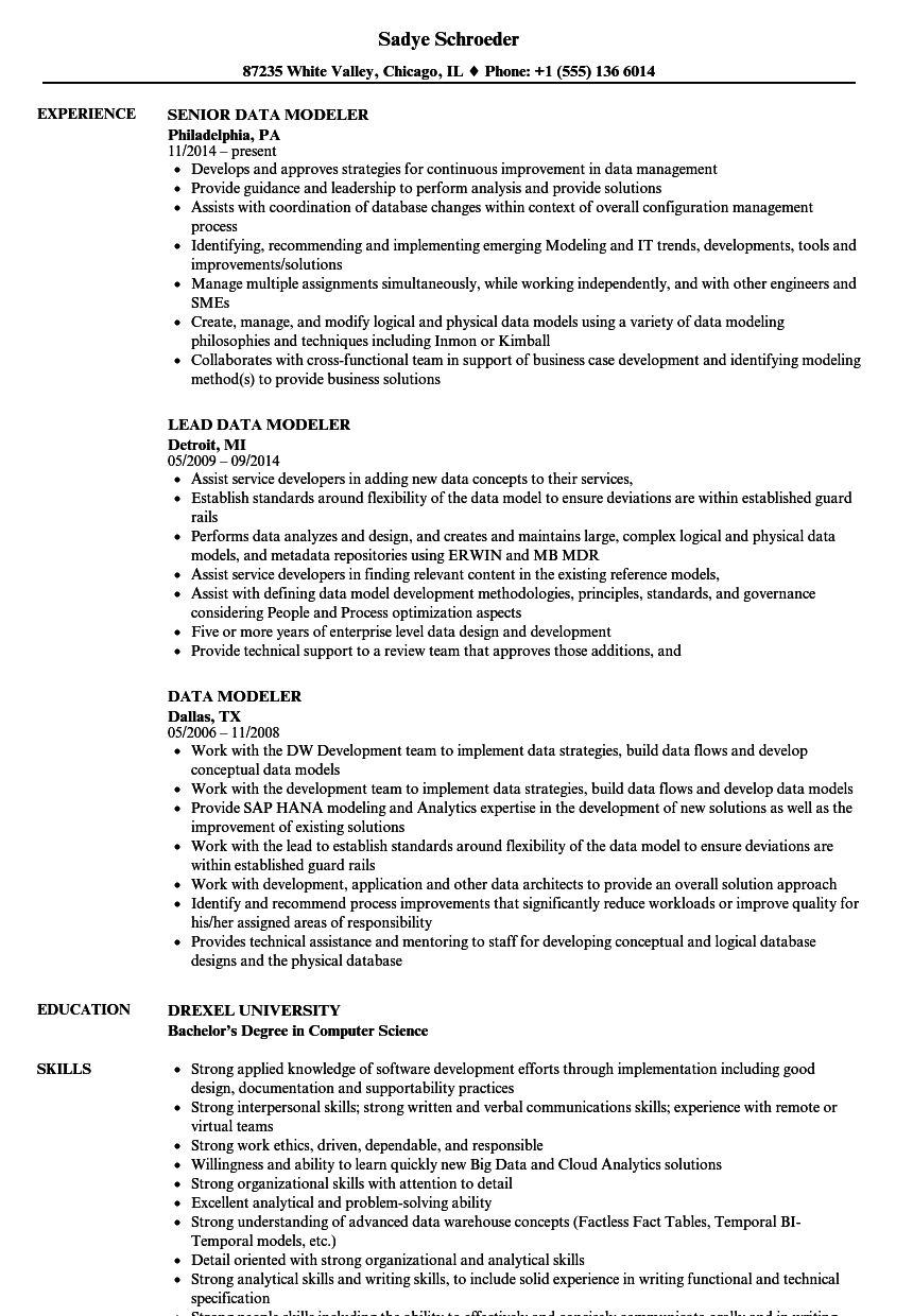 data services manager resume sample