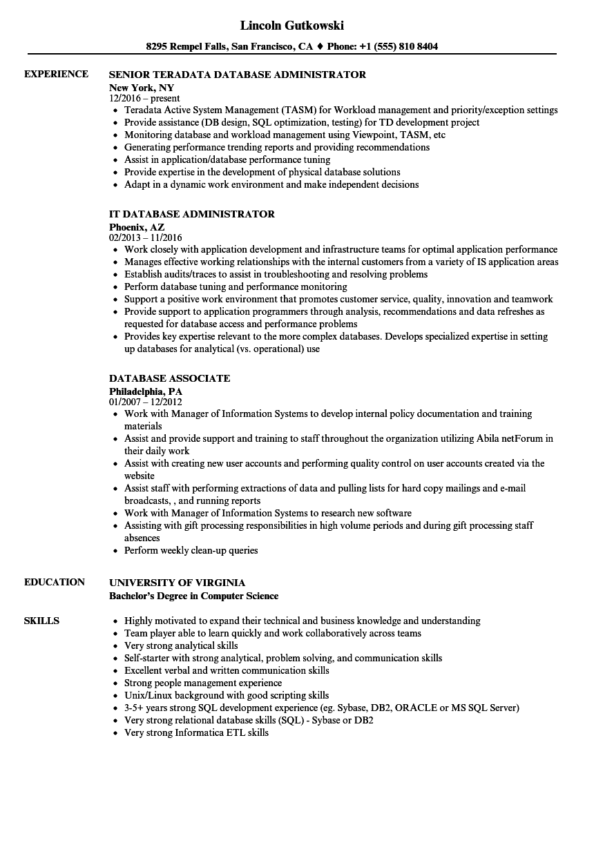 sample of experience based resume