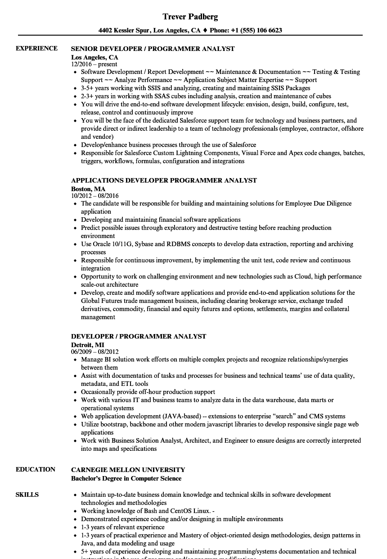 analyst programmer resumes