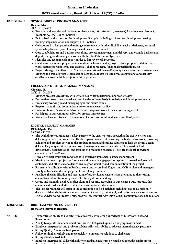 sample resume digital project manager