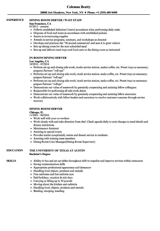 sample resume for server support