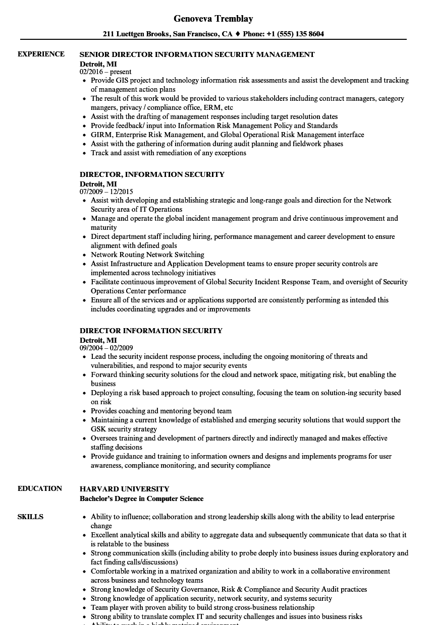 security director resume samples