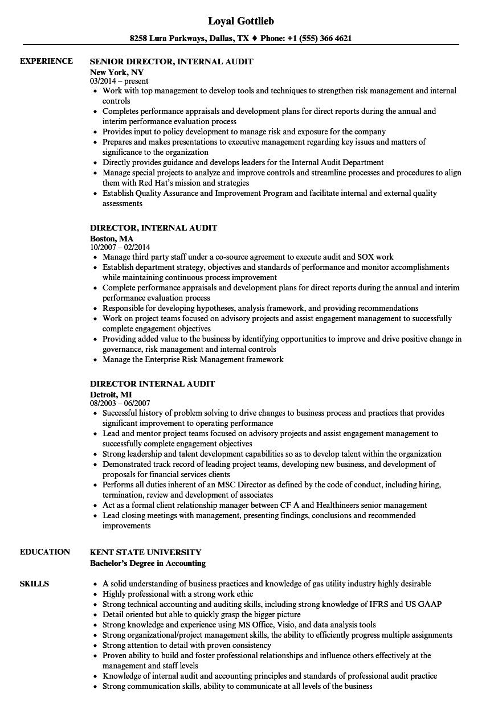 sample it audit manager resume