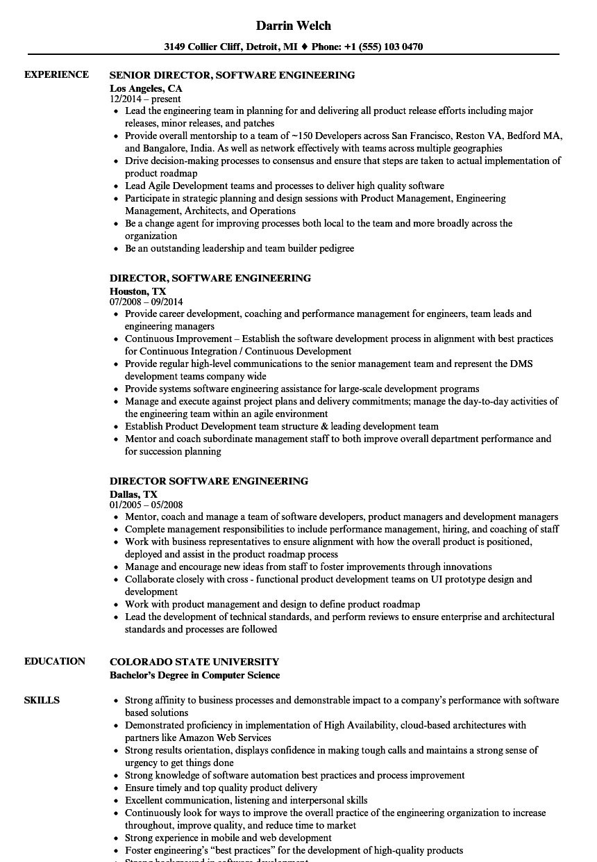director engineering resume examples