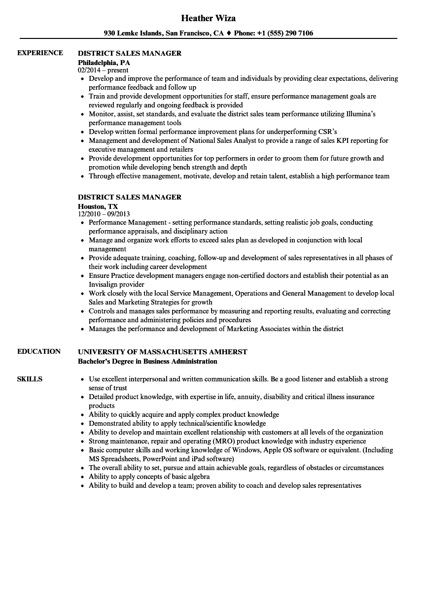 district sales manager resume examples