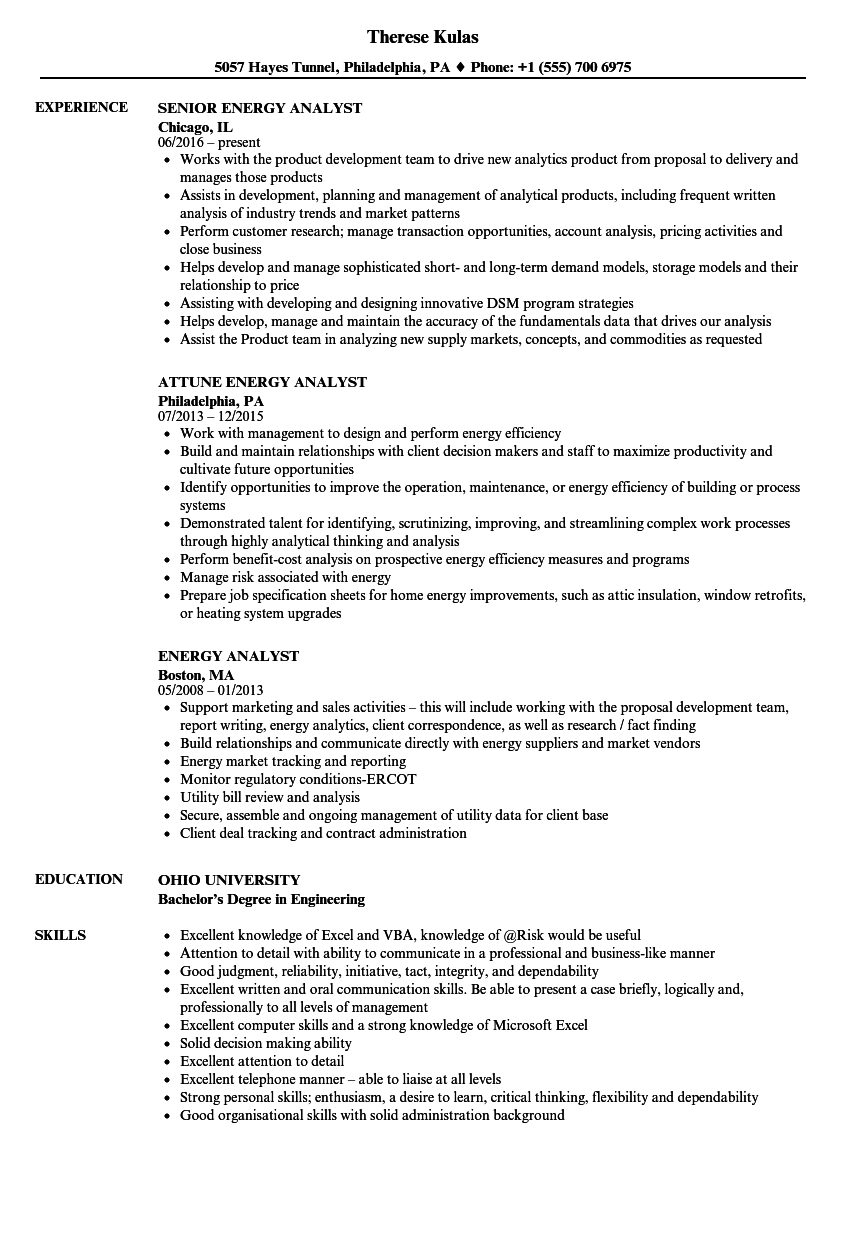 excel analyst sample resume