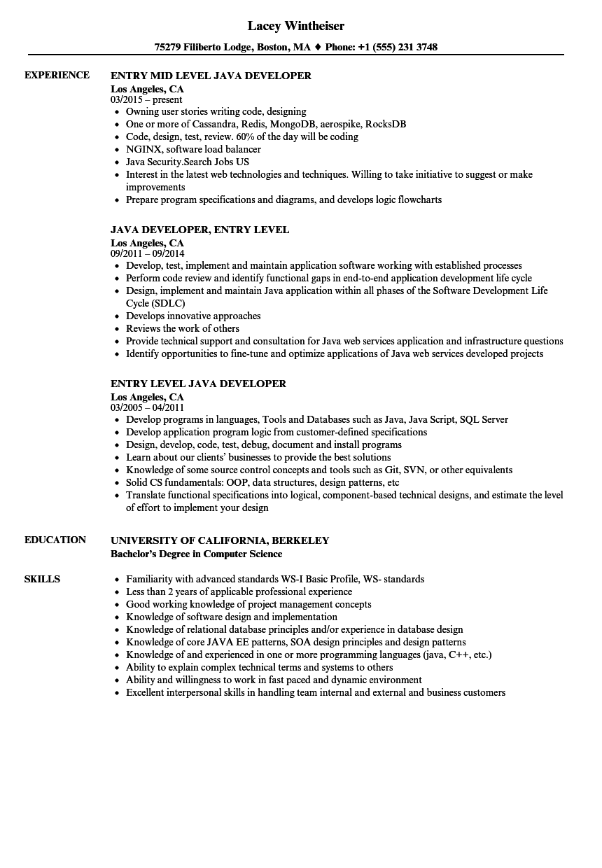 sample java web developer resume