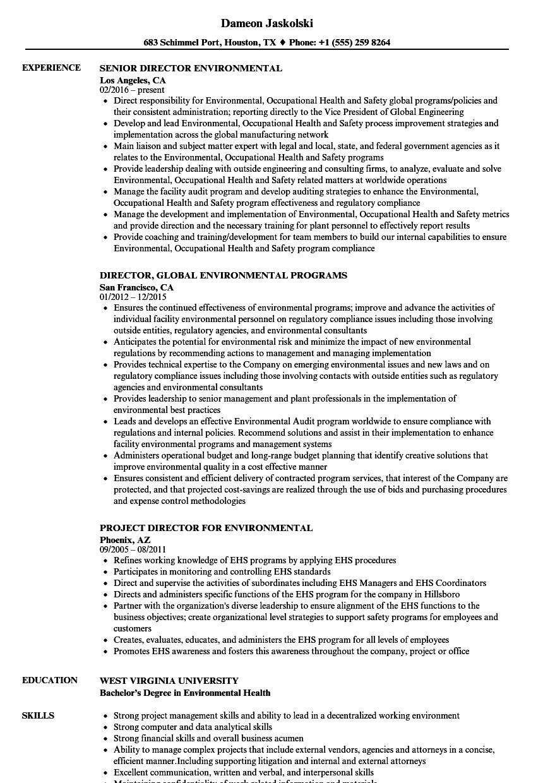senior director resume sample