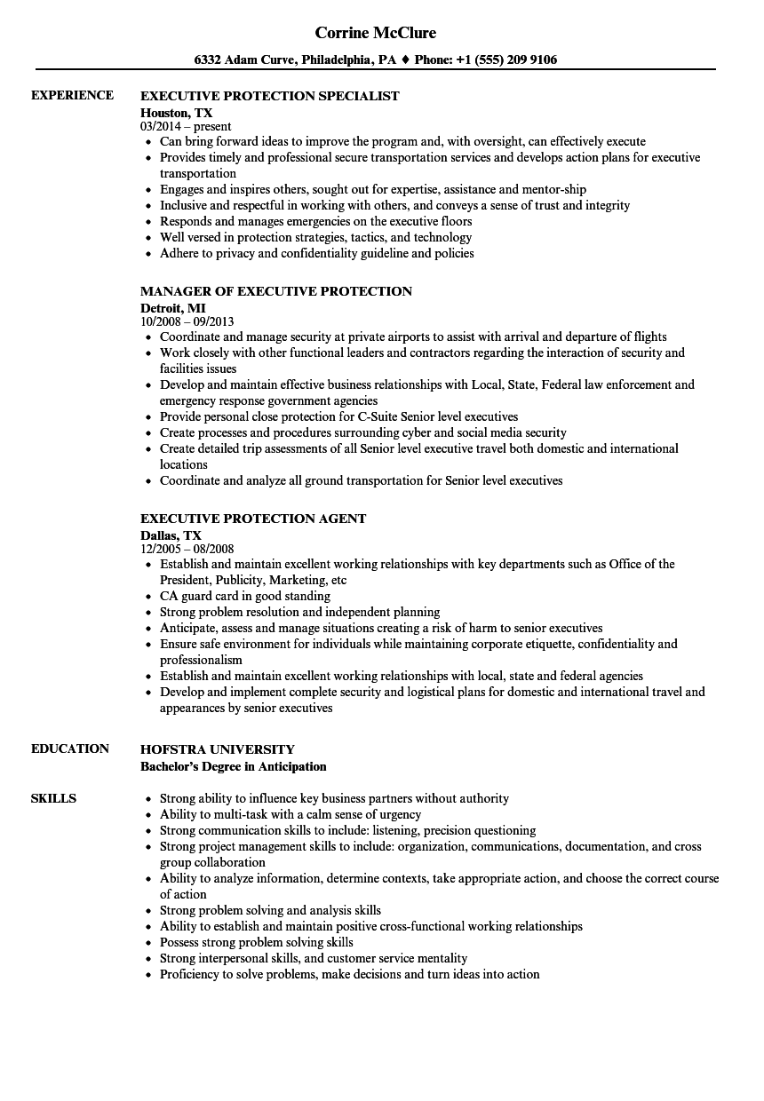 executive security resume examples