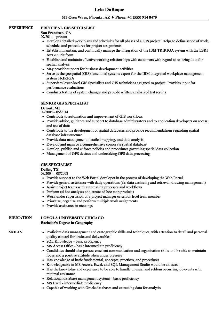 resume description example