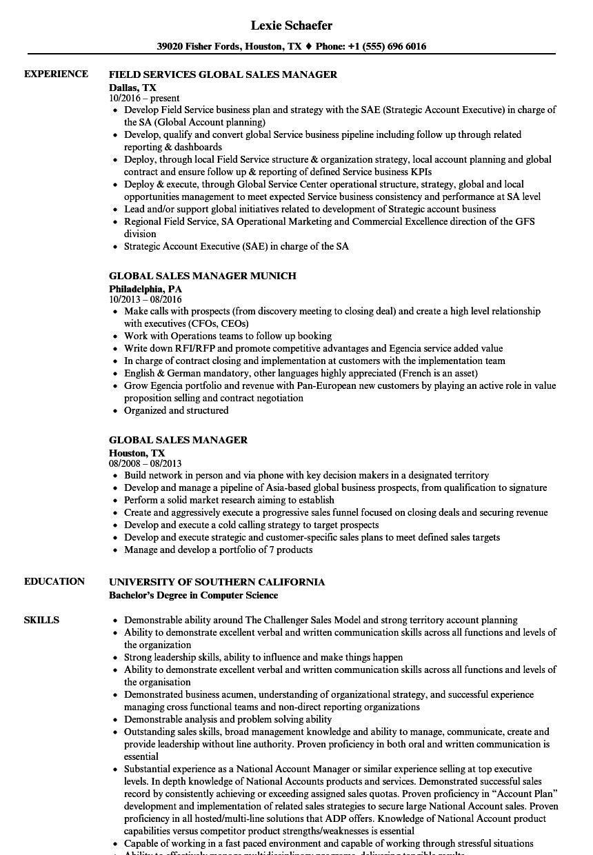 sample sales account executive resume