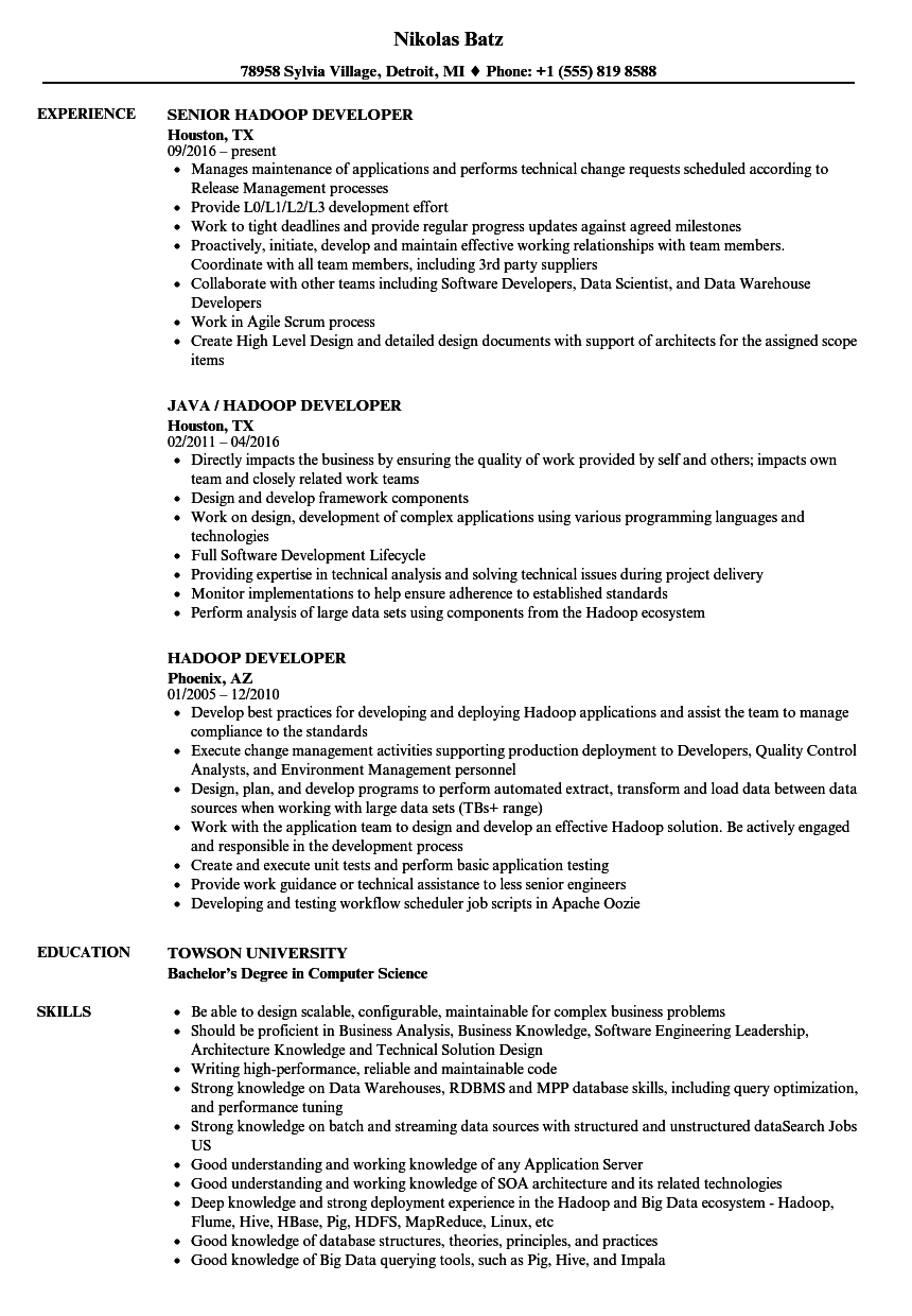 resume samples with work experience