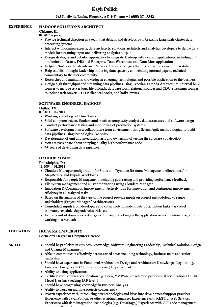 how to mention project details in resume sample