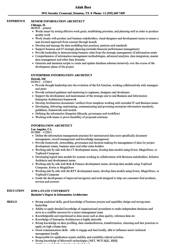 job application resume sample