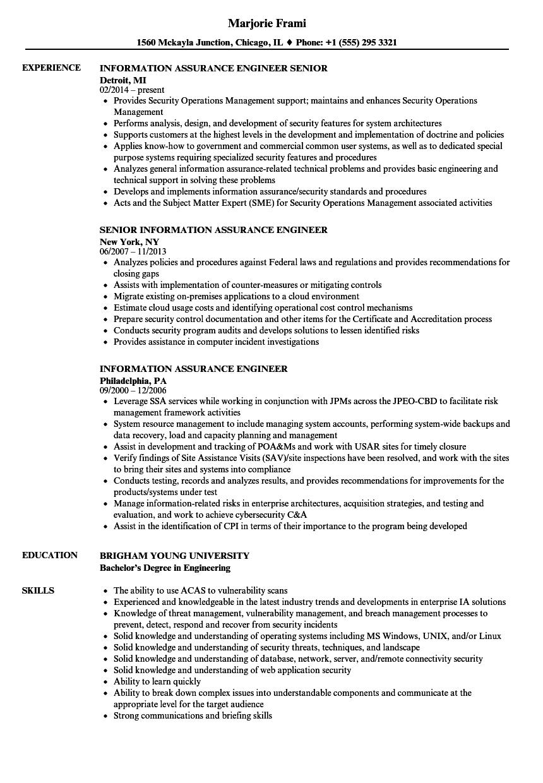 risk assurance sample resume