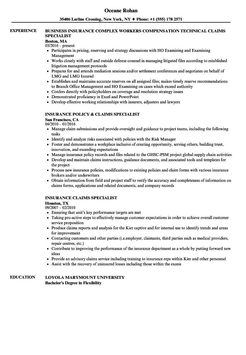 sample resume for claims adjusters