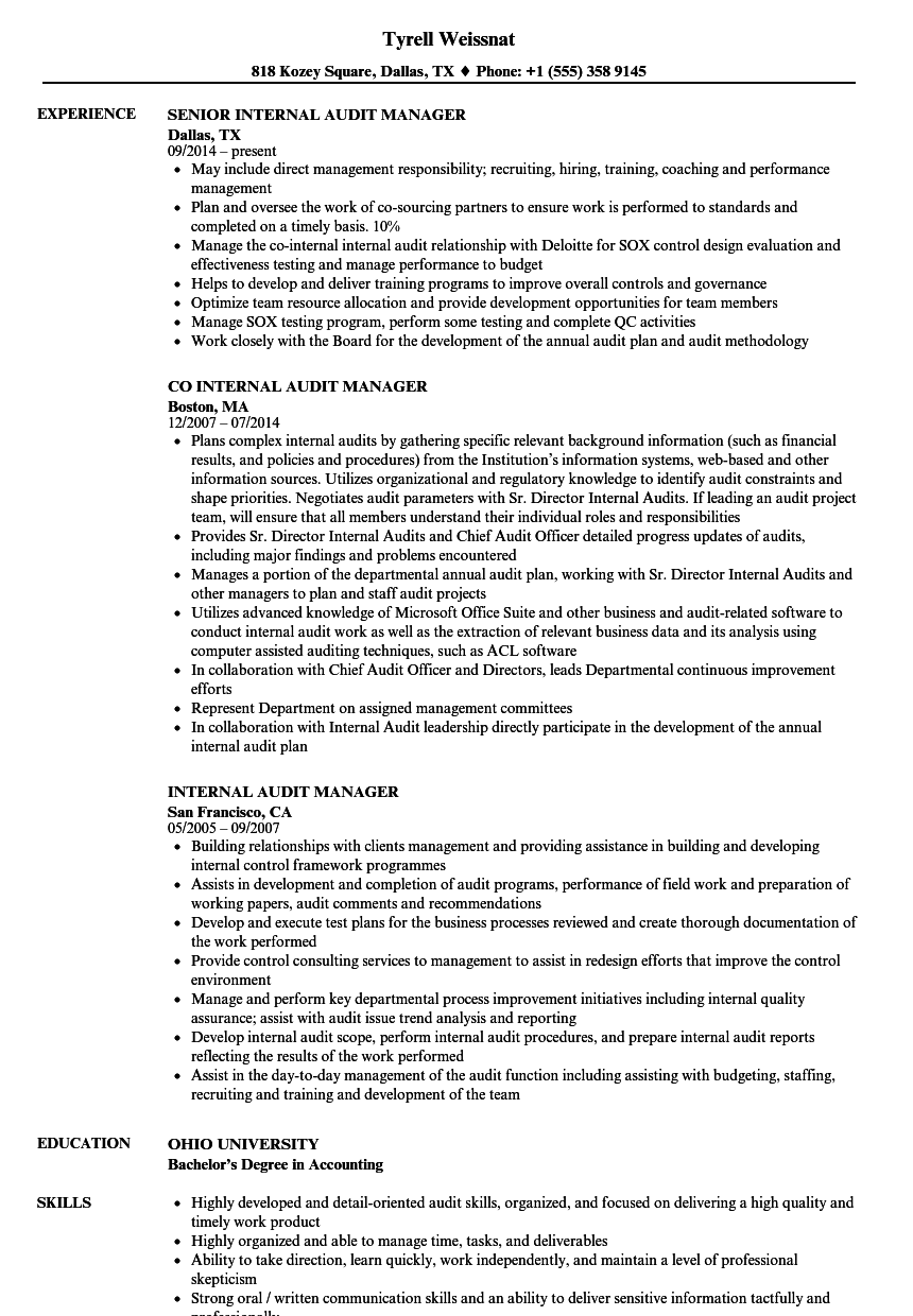 internal audit manager resume examples