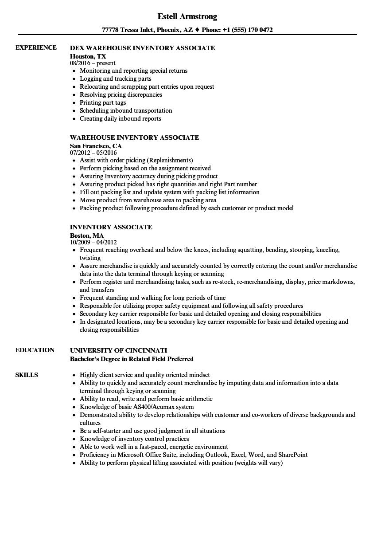 inventory auditor resume sample