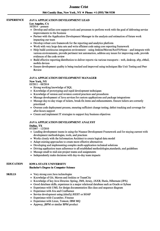 resume examples business development