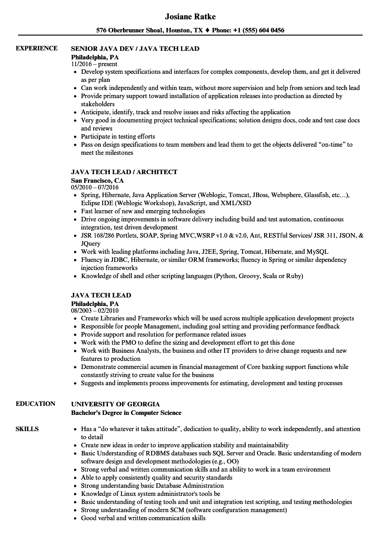 software tech lead resume sample