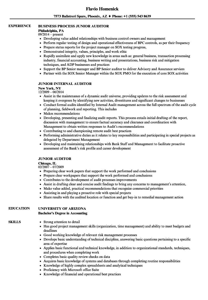 cv auditor junior english