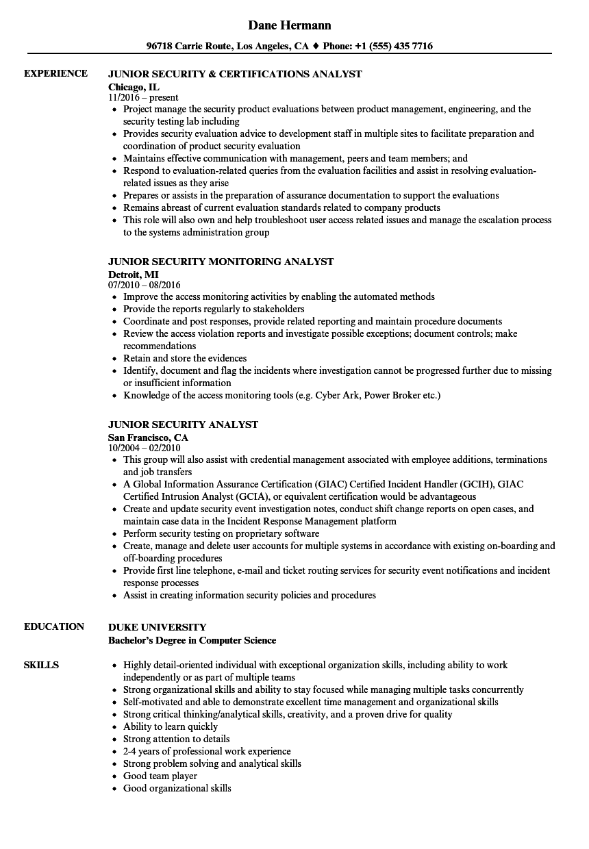 junior business analyst resume examples
