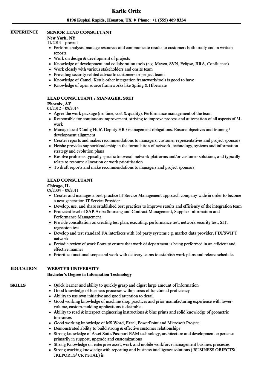 sample solutions consultant resume