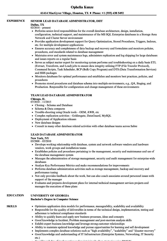 lead server resume sample