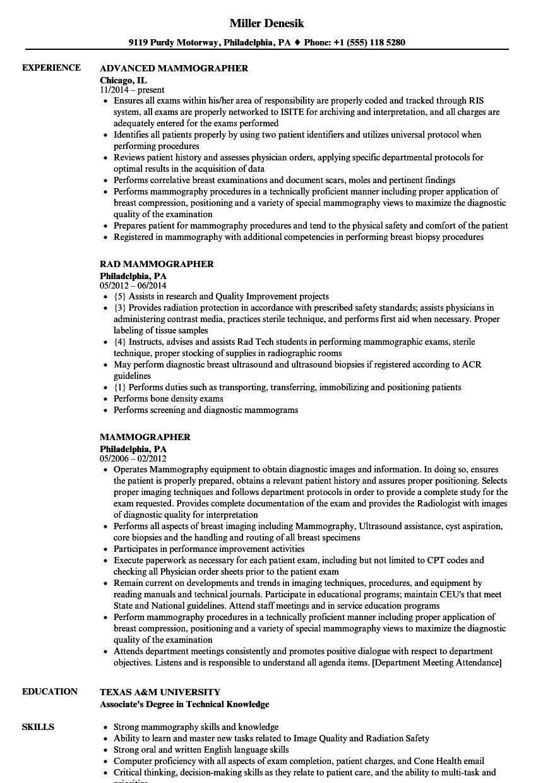 it department resume sample