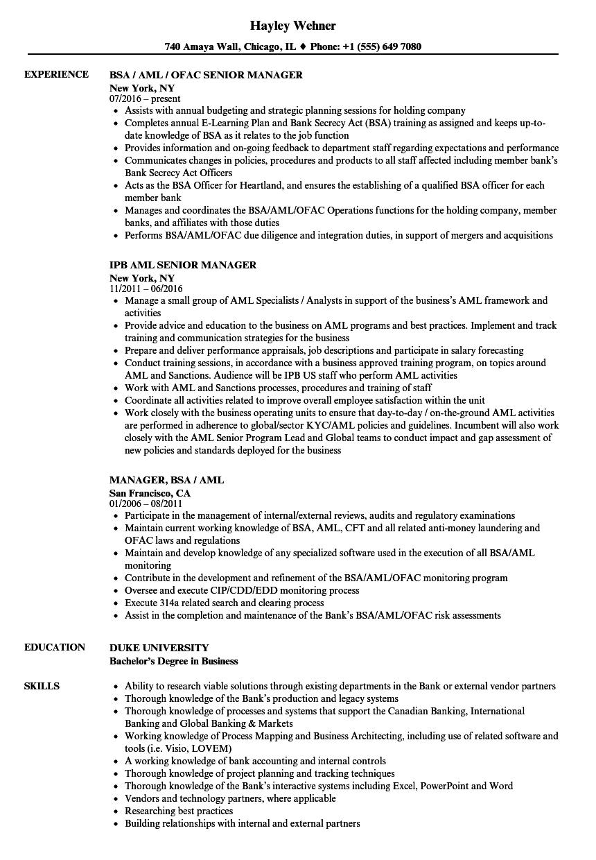 aml resume examples