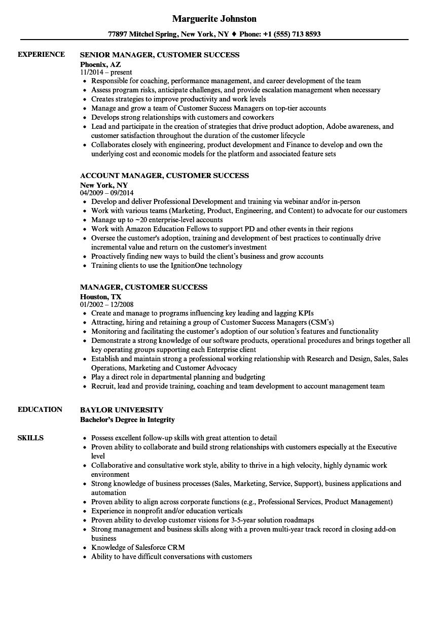 it support manager resume examples