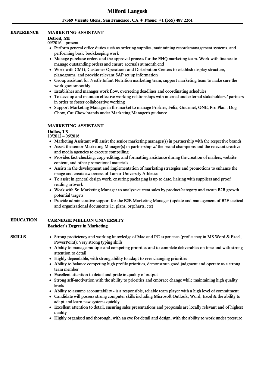 graduate marketing assistant cv