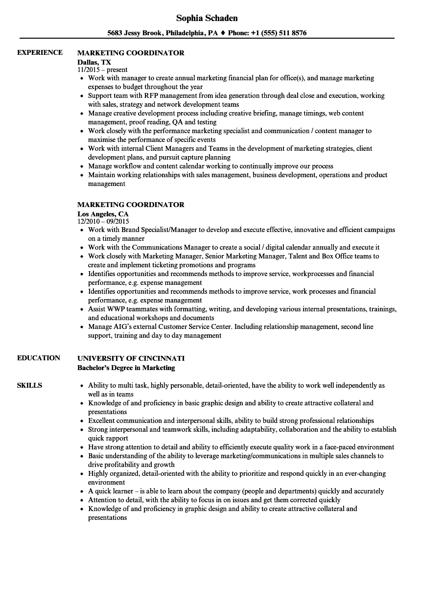 sample career resume marketing coordinator and development