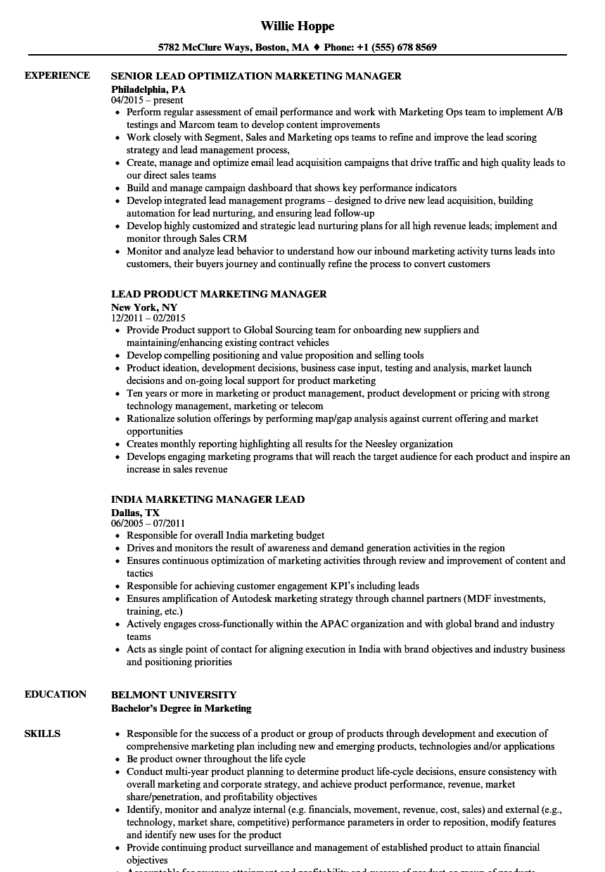 channel marketing manager resume sample