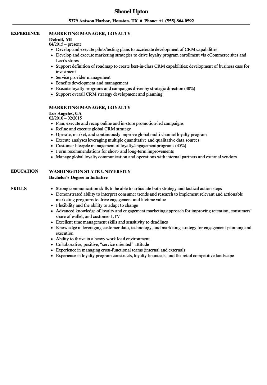 digital marketing manager resume example