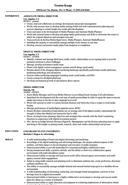 account director resume samples