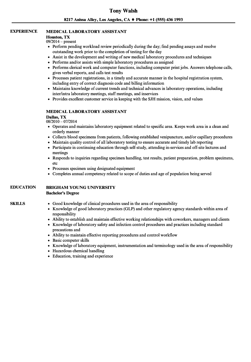 resume examples for lab assistant