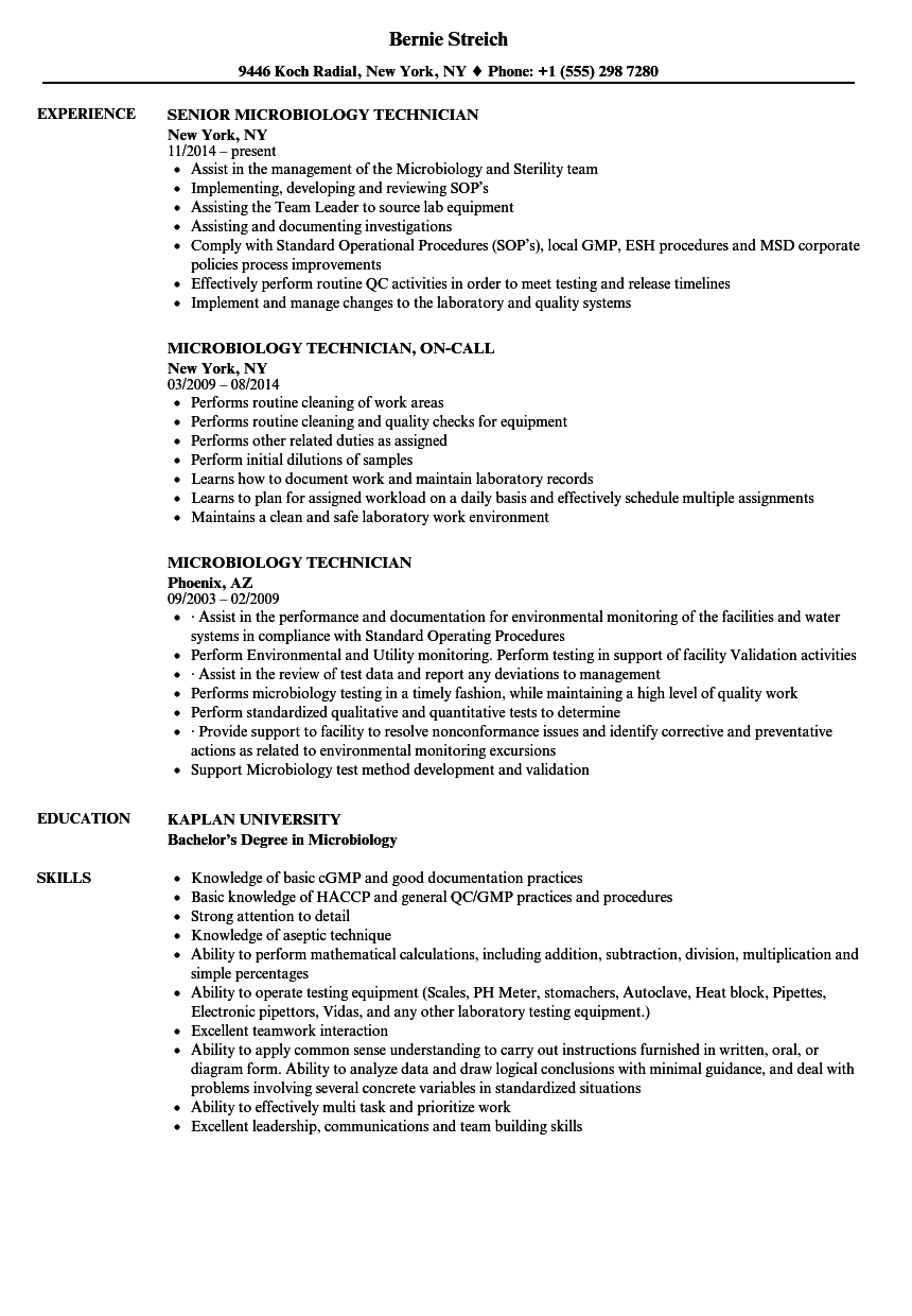 sample resume it support technician