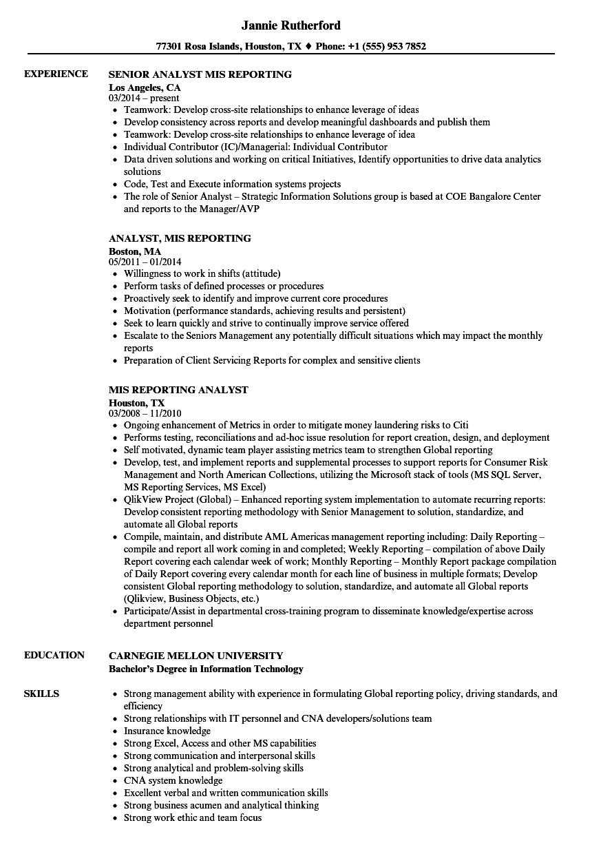 mis profile resume sample