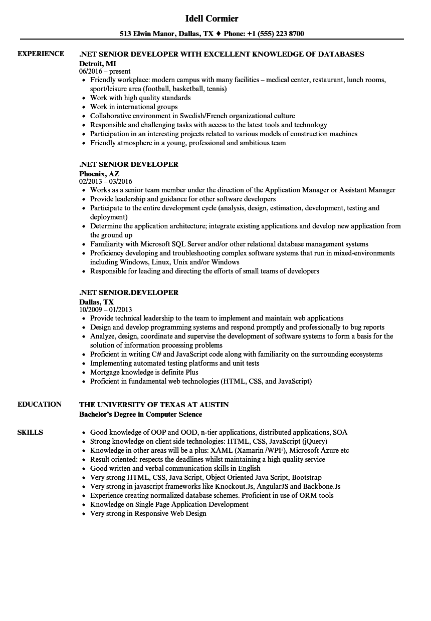 .net developer resume objective sample
