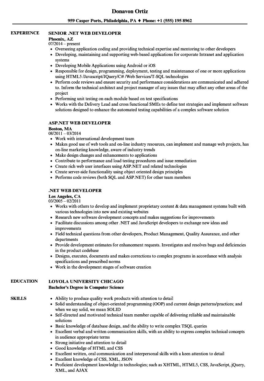 powershell developer sample resume