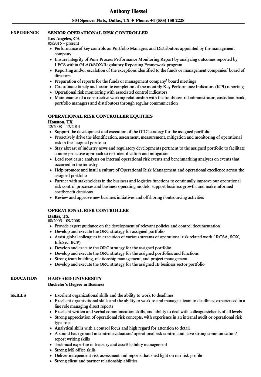 risk management resume examples