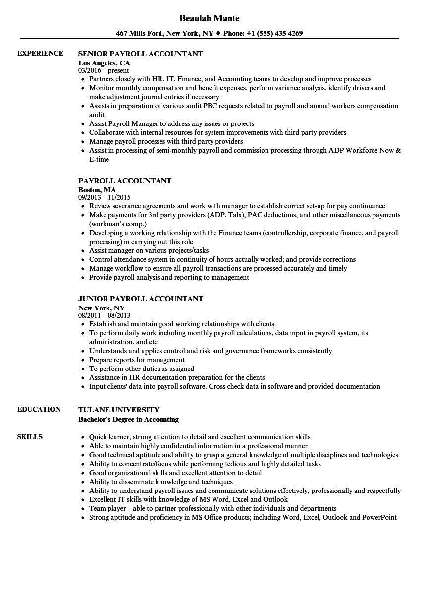 resume skills section accounting