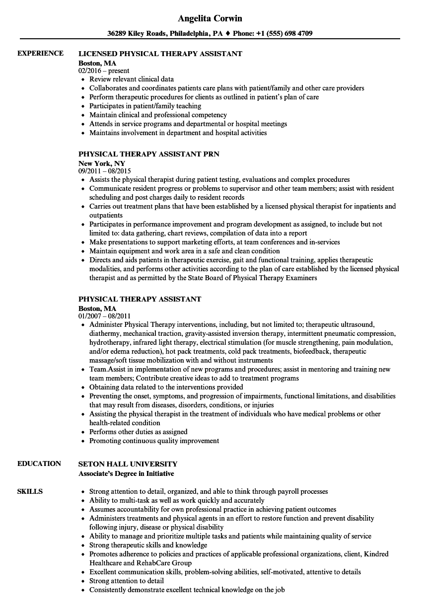 resume description physical therapy assistant
